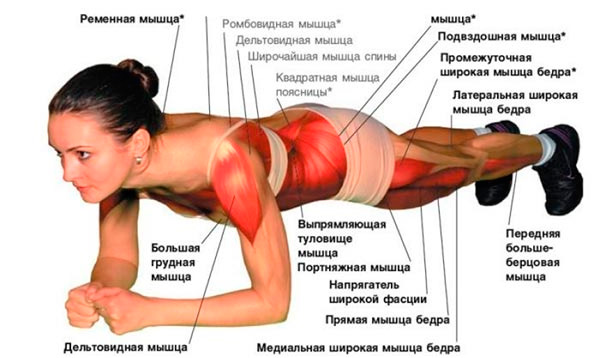 какие упражнение для похудения живота
